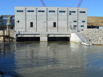 Downstream side of dam showing tailrace and one cofferdam cell removed. January 2019